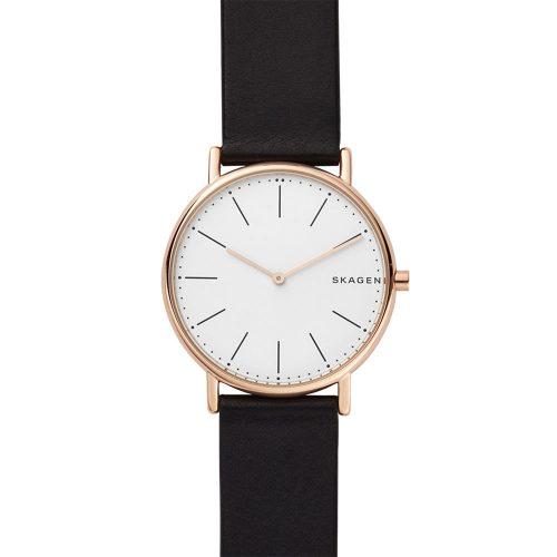 Reloj Skagen Signatur SKW6430